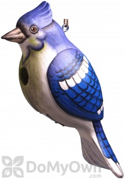 Songbird Essentials Blue Jay Bird House (SE3880302)