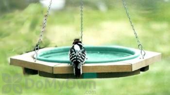 Songbird Essentials Green Mini Hanging Bird Bath (SE504)