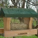 Songbird Essentials Little Looker Bird Feeder (SE514)