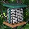 Songbird Essentials Recycled Poly Double Suet Bird Feeder (SE525)