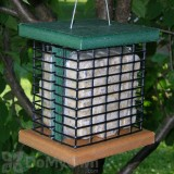 Songbird Essentials Recycled Poly Double Suet Bird Feeder (SE525)