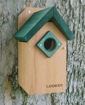 Songbird Essentials Green Roof Bluebird House (SE543)