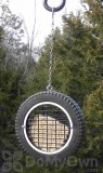 Songbird Essentials Wilburs Wheel Woodpecker Feeder (SE567)