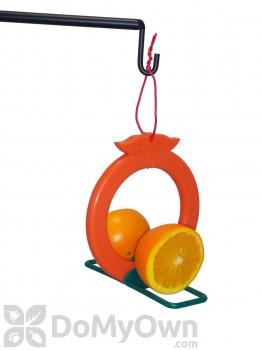 Songbird Essentials Double Orange Bird Feeder (SE6005)