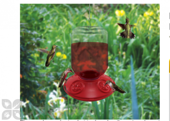Songbird Essentials Dr. JB complete Switchable Hummingbird Feeder with Red Flowers Bulk 48 oz. (SE6026)