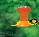 Songbird Essentials Fliteline Junior Oriole Feeder 30 oz. (SEBCO230)