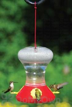 Songbird Essentials Fliteline Red Hummingbird Feeder 30 oz. (SEBCO360)