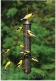 Songbird Essentials Copper Spiral Thistle Feeder 17 in. (SEBQSBF2C)