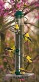 Songbird Essentials Green Spiral Sunflower Feeder 17 in. (SEBQSBF3G)