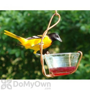 Songbird Essentials Single Jelly Cup Bird Feeder 6 oz. (SEHHJLSC)