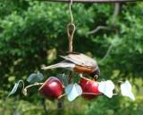 Songbird Essentials Oriole Fruit Feeder (SEHHORFF)