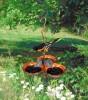 Songbird Essentials Copper Triple Cup Oriole Jelly Feeder (SEHHORTC)