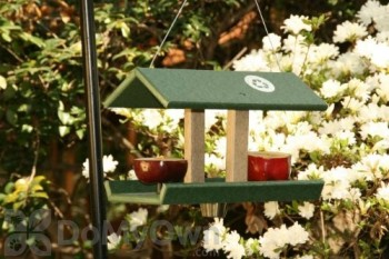 Songbird Essentials Hunter Driftwood Fruit and Jelly Bird Feeder with Dish (SERUBDFR100HD)
