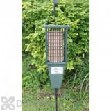 Songbird Essentials Green Double Suet Bird Feeder (SERUBDSF200H)