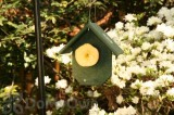 Songbird Essentials Hunter Green Fruit Bird Feeder (SERUBFR100)