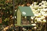 Songbird Essentials Green Hopper Bird Feeder 4 qts. (SERUBHF500)