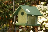 Songbird Essentials Meal Worm Bird Feeder (SERUBMWF100)