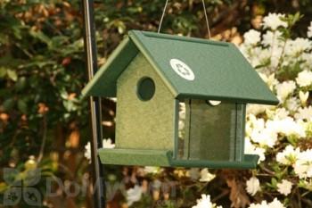 Songbird Essentials Meal Worm Bird Feeder (SERUBMWF100)