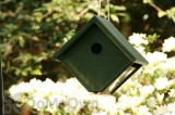 Songbird Essentials Hunter Ivory Recycled Plastic Wren Bird House (SERUBWH105)