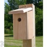 Songbird Essentials Chickadee House (SESC1005C)