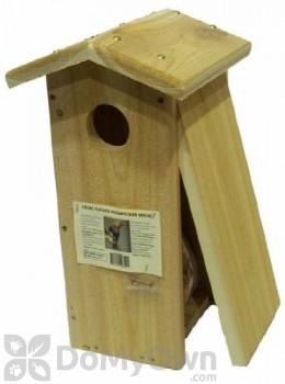 Songbird Essentials Flicker Woodpecker House (SESC1034C)