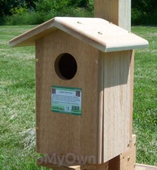 Songbird Essentials Screech Owl Bird House (SESC1035C)