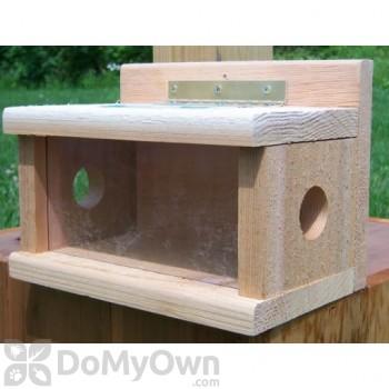 Songbird Essentials Post Mount Bluebird Feeder (SESC1050C)