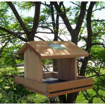 Songbird Essentials Vista Bird Feeder with Hopper (SESC2005C)