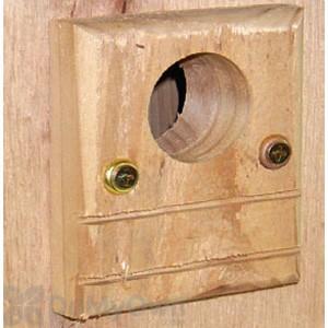 Songbird Essentials Guard For Bluebird Box Bird House (SESC6010C)