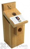 Songbird Essentials Western Bluebird Box Viewing Top (SEWBBSC1007C)