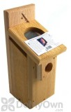 Songbird Essentials Screen Top Western Bluebird Box Bird House (SEWBBSC1009C)