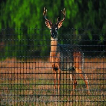 Tenax Deer Fence C Flex Premium