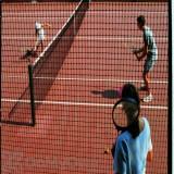 Tenax Cintoflex C Barrier Fence