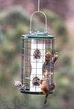 Vari - Crafts Mixed Seed Bird Feeder 1 qt. (VCAV3M)