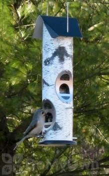 Vari - Crafts Birch Log Mixed Seed Bird Feeder (VCLOG2M)