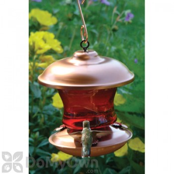 Woodlink Brushed Copper and Ruby Glass Hummingbird Feeder 16 oz. (WLH5)