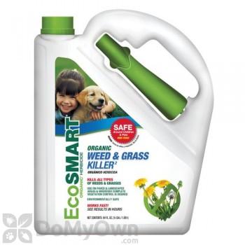 EcoSmart Weed & Grass Killer RTU