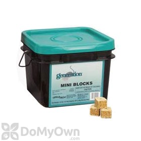 Generation Mini Blocks