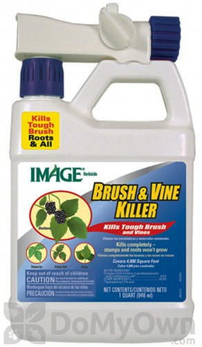 Vine x vine and brush control
