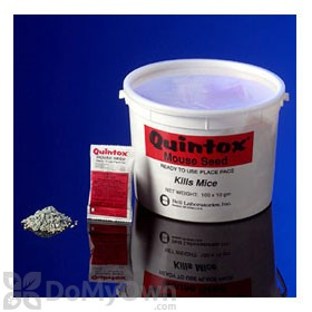 Quintox Mouse Seed Place Paks
