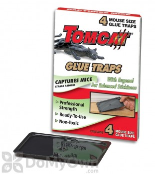 Motomco Tomcat Mouse Glue Trap with Eugenol