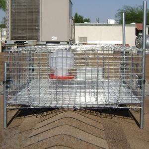 Bird Barrier Pigeon Trap with Shade, Water and Feeder - Large (tt-sw20)