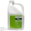 Bayer 26 GT Fungicide