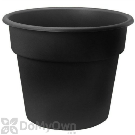 Bloem Dura Cotta Planter 10 in.
