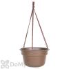 Bloem Dura Cotta Hanging Basket 12 in.