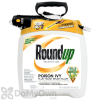 Roundup Ready-to-Use Poison Ivy Plus Tough Brush Killer in the Pump 'N Go 2 Sprayer