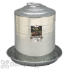 Little Giant Double Wall Metal Poultry Fount 5 Gal.