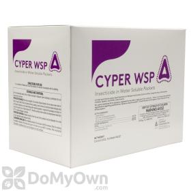 Cyper WSP
