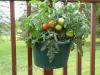 My Garden Post Large Planter - Hunter Green