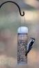 Aspects Peanut Silo Bird Feeder (284)